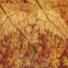 Angel Grinder 'I'll Wait Till You Bleed'